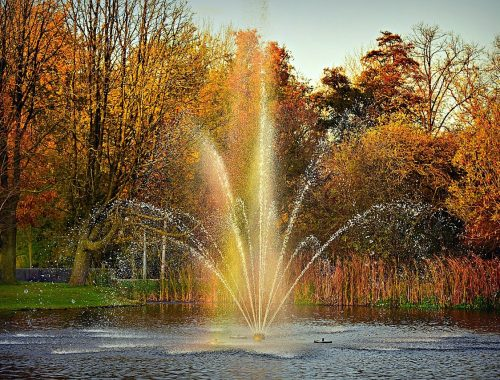 beste parken van Nederland