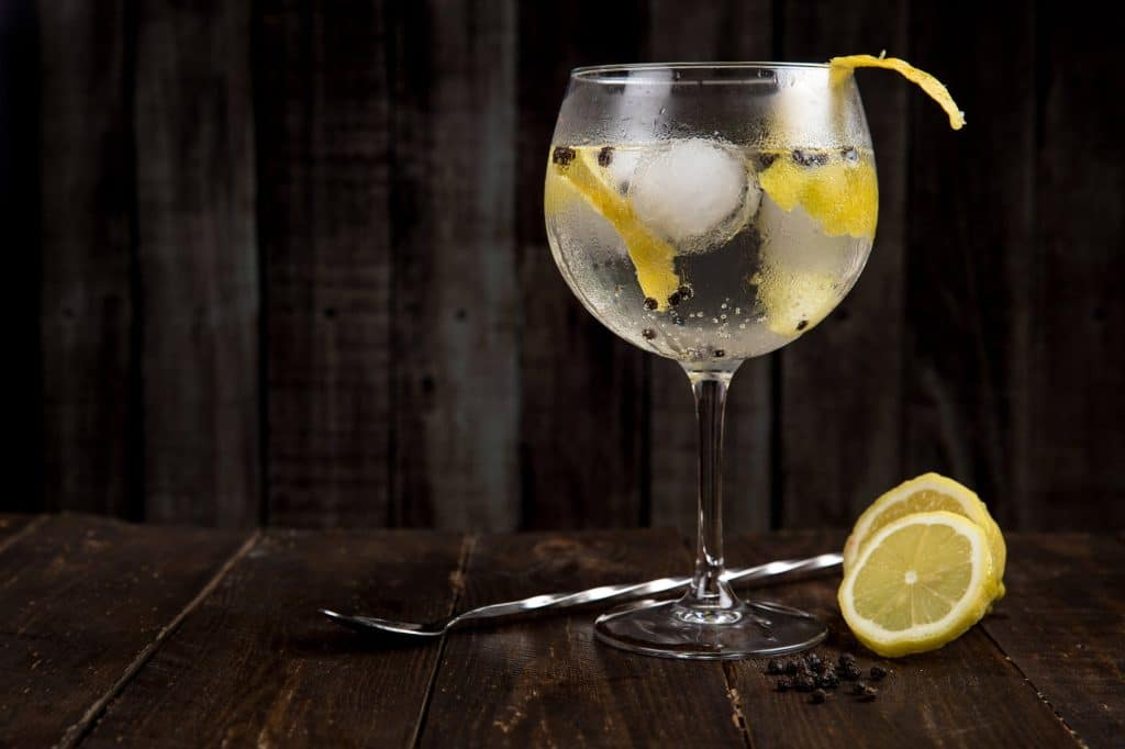 gin tonic tips