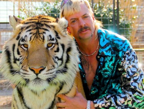 Tiger King: Murder, Mayhem and Madness netflix docuserie