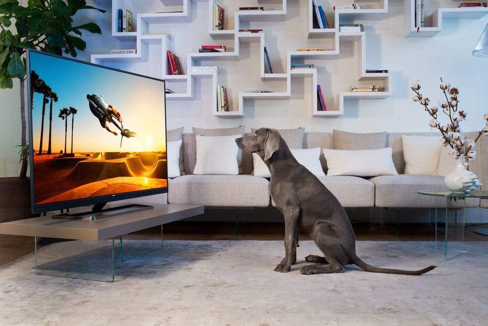 Philips TV collectie 2017 high-end kopen