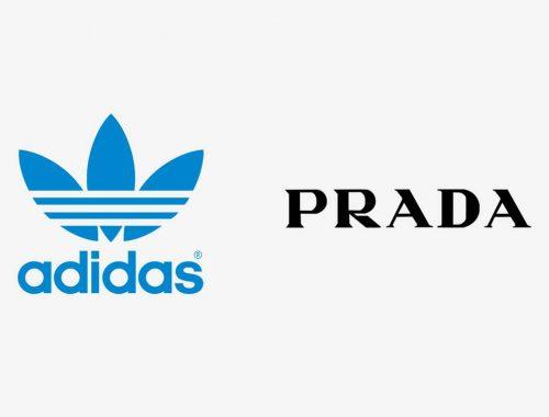 Prada x adidas Sailing sneaker