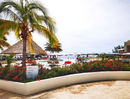 restaurant Koraal Curaçao - Lunchen rooftop bar & infinity pool recensie