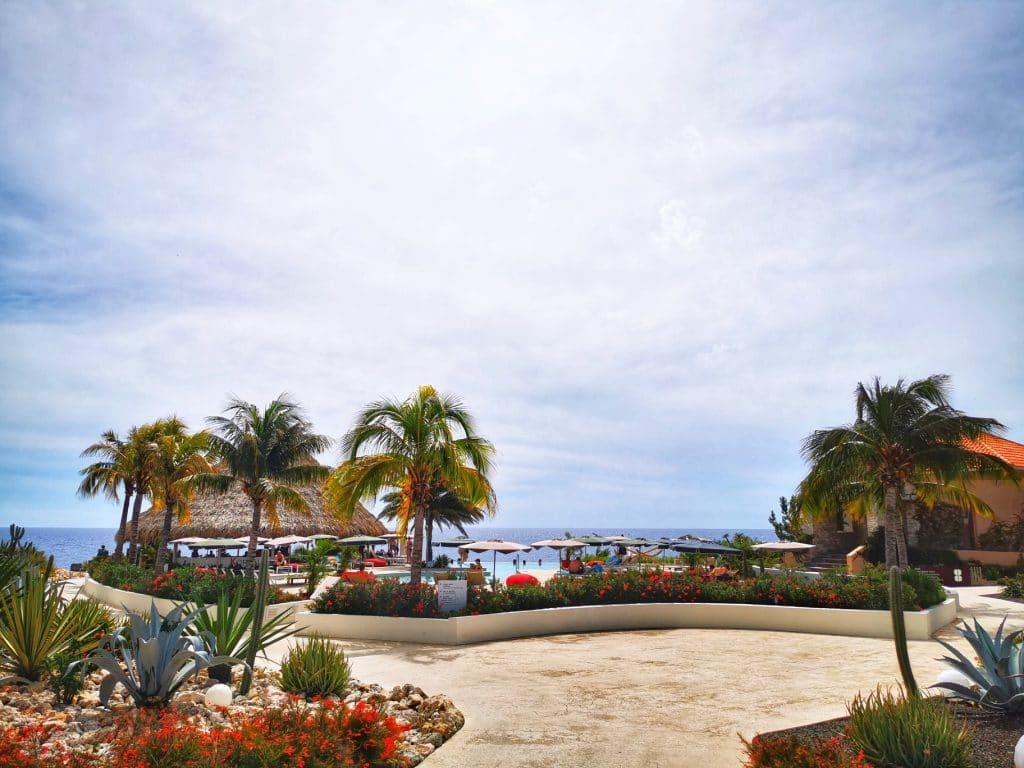 restaurant Koraal Curaçao - Lunchen rooftop bar & infinity pool recensie
