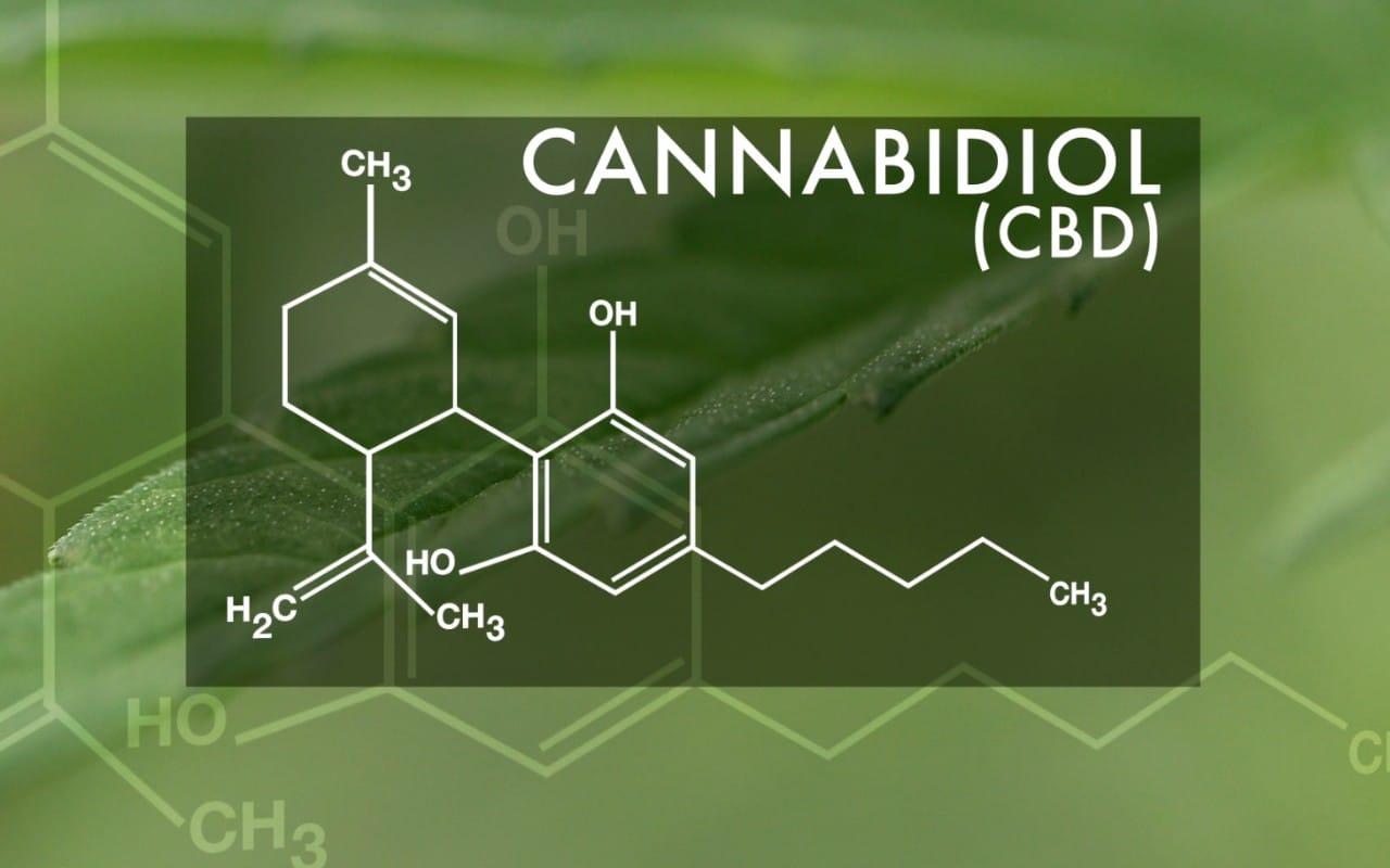 wat is cannabidiol cbd
